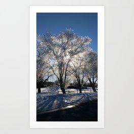 Sunshine in winter Art Print