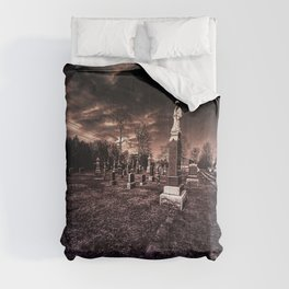 End of Contemplation. Comforters