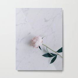Blush Pink Peony on Marble Surface Metal Print
