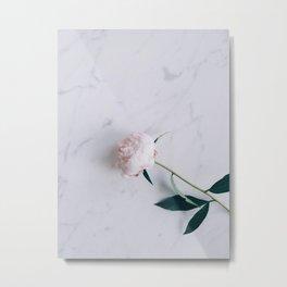 Blush Pink Peony on Marble Surface Metal Print