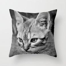 Kitty Cat Throw Pillow