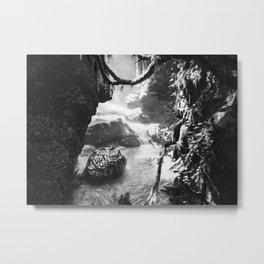 Wild Georgia Metal Print