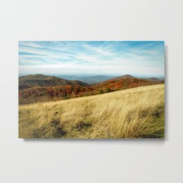 The Wild Beyond Metal Print