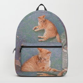 Cat Lounging Backpack