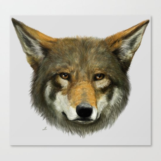Wolf face Canvas Print