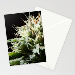 Cannabis Pineapple Chunk Stationery Cards