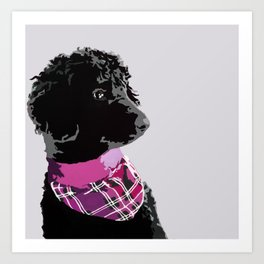 Black Standard Poodle in Grey and Pink Art Print