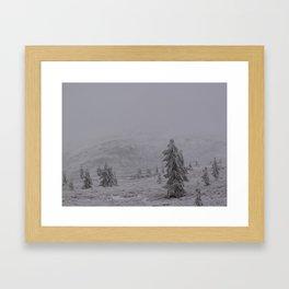 Border Land Framed Art Print