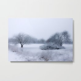 winter magic Metal Print
