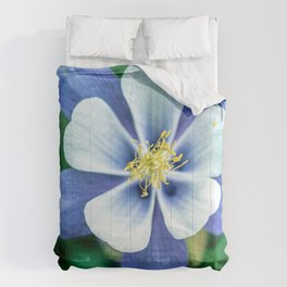Colorado Columbine // States Flower Close up Purplish Blue Petals White and Yellow Accents Comforters
