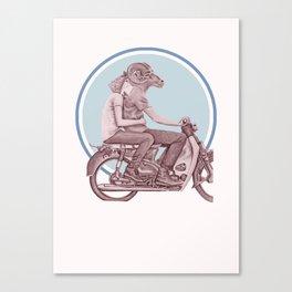 Menagerie Sheep & Ram Canvas Print