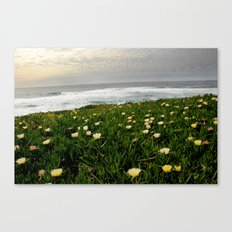 The California Coast Canvas Print