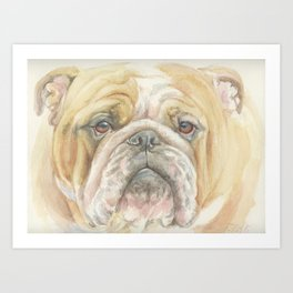 Bully ENGLISH BULLDOG FACE Dog portrait Watercolor painting  Cute Pet decor for Dog Lover Art Print