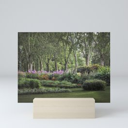 Secret Garden Mini Art Print