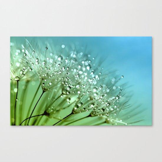 Aqua Sparkling dewdrops on a Dandelion- Flower Flowers Canvas Print