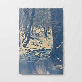 The wood Metal Print