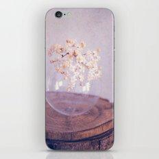elder iPhone & iPod Skin