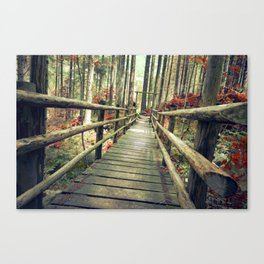 Love, bridge. Canvas Print
