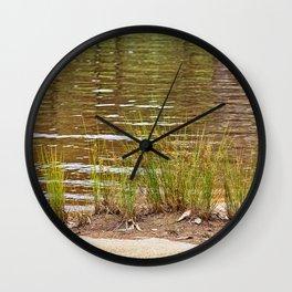 Beautiful River Grass Wall Clock