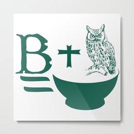 B Plus Owl is Bowl Metal Print