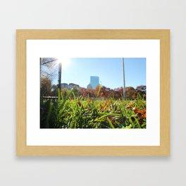 Boston Commons Park Framed Art Print