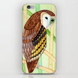 Eastern Grass Owl iPhone Skin
