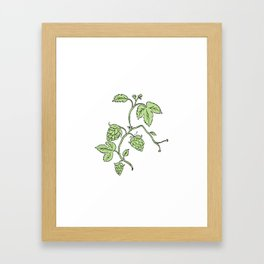 Hop Plant Climbing Drawing Framed Art Print