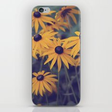 Rudbeckia Obsession iPhone & iPod Skin