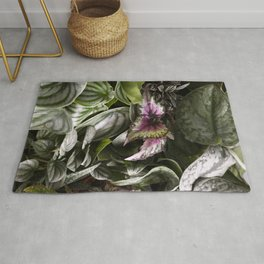 Moody Plants  |  The Houseplant Collection Rug