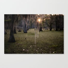 Sun Rise in the Swamps of Home Canvas Print