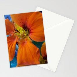 Libi's Nasturtiums Stationery Cards
