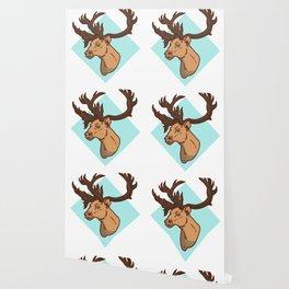 Wild, Animal, Forest Wallpaper