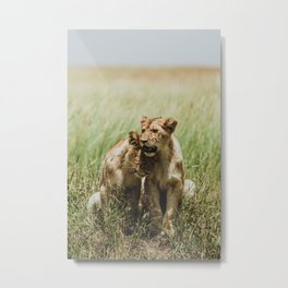 Serengeti National Park, Tanzania Metal Print