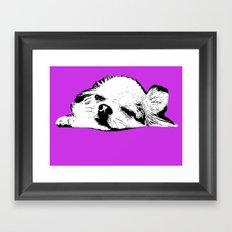 Sleepy Long Hair Chihuahua Framed Art Print