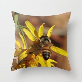 Desert Sunflower Pollen Picker Throw Pillow