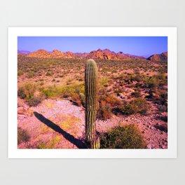 Desert Scape Art Print