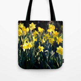 DAFFODILS IN THE LATE SPRING AFTERNOON LIGHT Tote Bag
