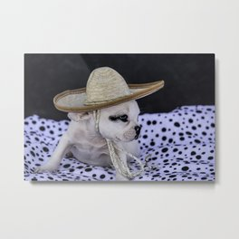 Tiny White French Bulldog Puppy with Black Markings Wearing an Oversize Sombrero Metal Print