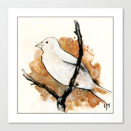 Watching the Sky Bird Canvas Print