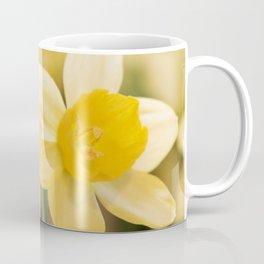 Tête-à-Tête Daffodil Coffee Mug
