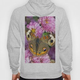 Common Buckeye Butterfly Hoody