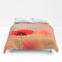 Poppy Dream Comforters