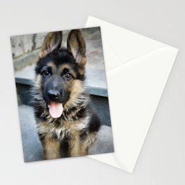 AARON 30g Stationery Cards