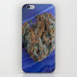 Jenny's Kush Medicinal Marijuana iPhone Skin