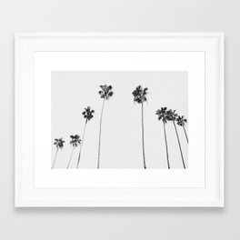 Black & White Palms Framed Art Print