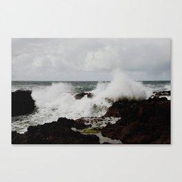 tidepools Canvas Print