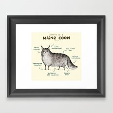 Anatomy of a Maine Coon Framed Art Print