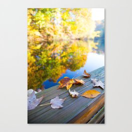 Gently Fallen Canvas Print