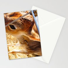 HoliCow Stationery Cards