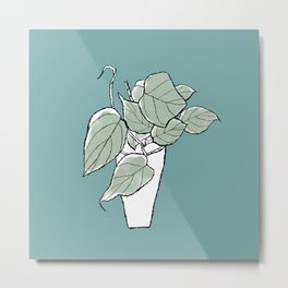Hand Drawn Philodendron Micans Aroid Houseplant Art Metal Print